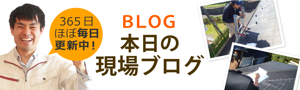 広島市、廿日市市やその周辺エリア、その他地域のブログ