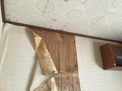 雨漏りによる天井のシミ、クロスの剥がれ